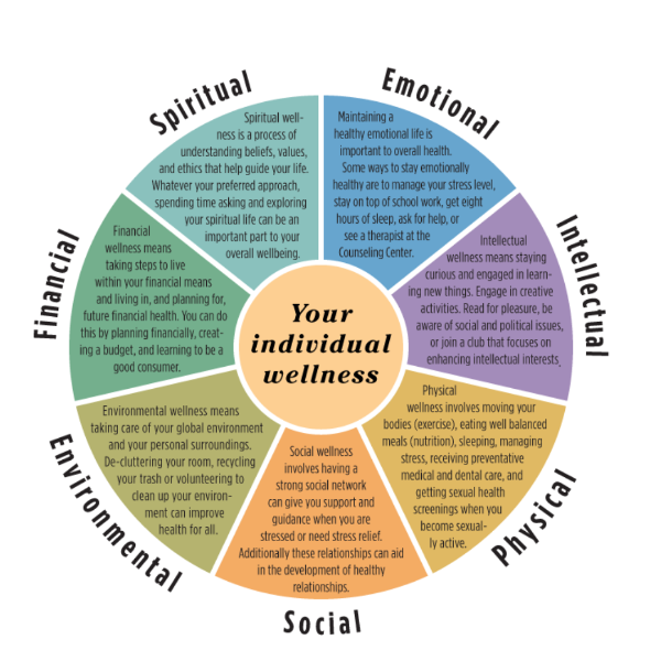 7 different components of wellness